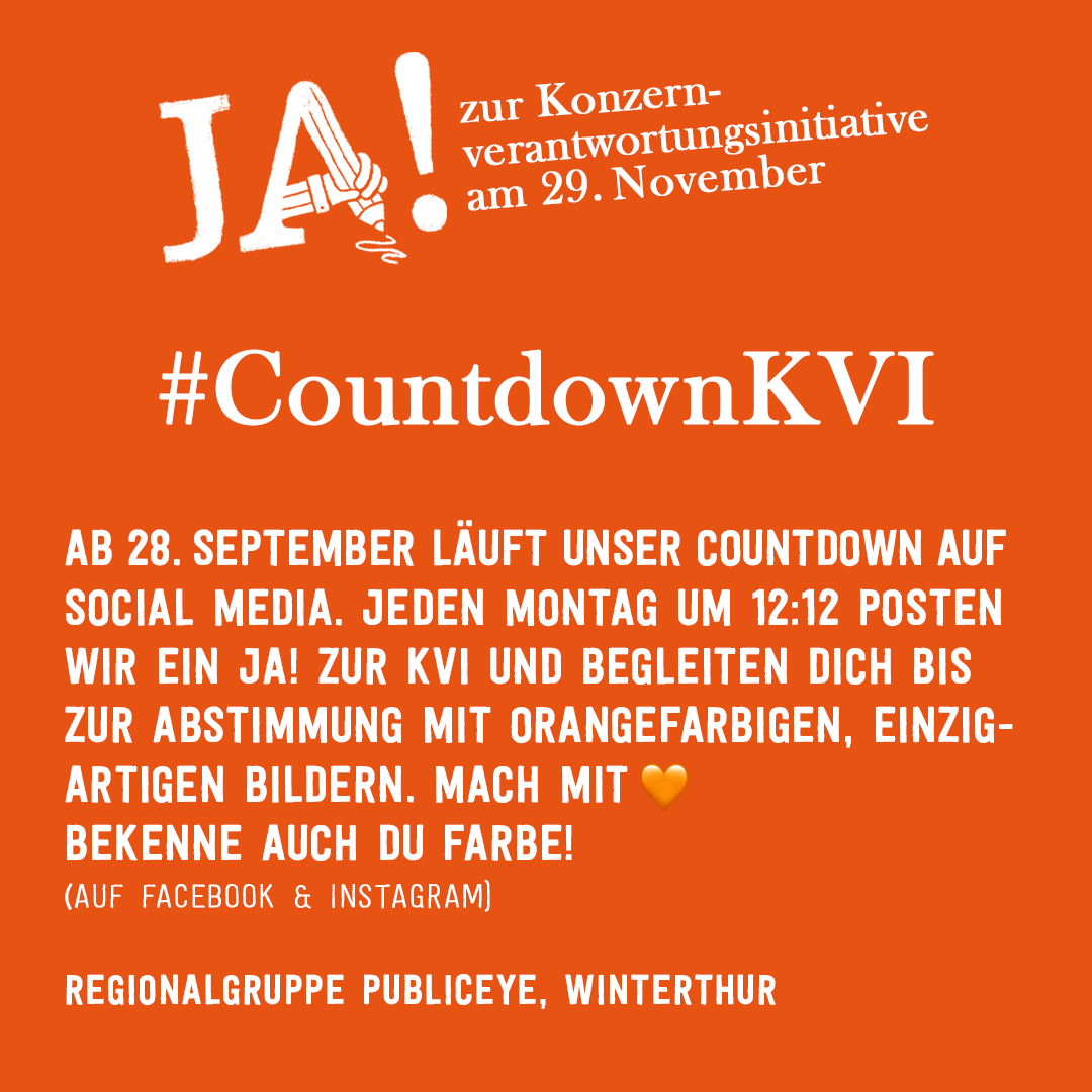 JA-Kampagne zur Abstimmung am 29.11.2020