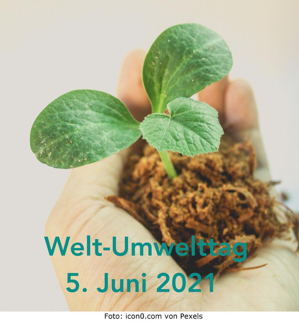 WELT-UMWELTTAG 2021