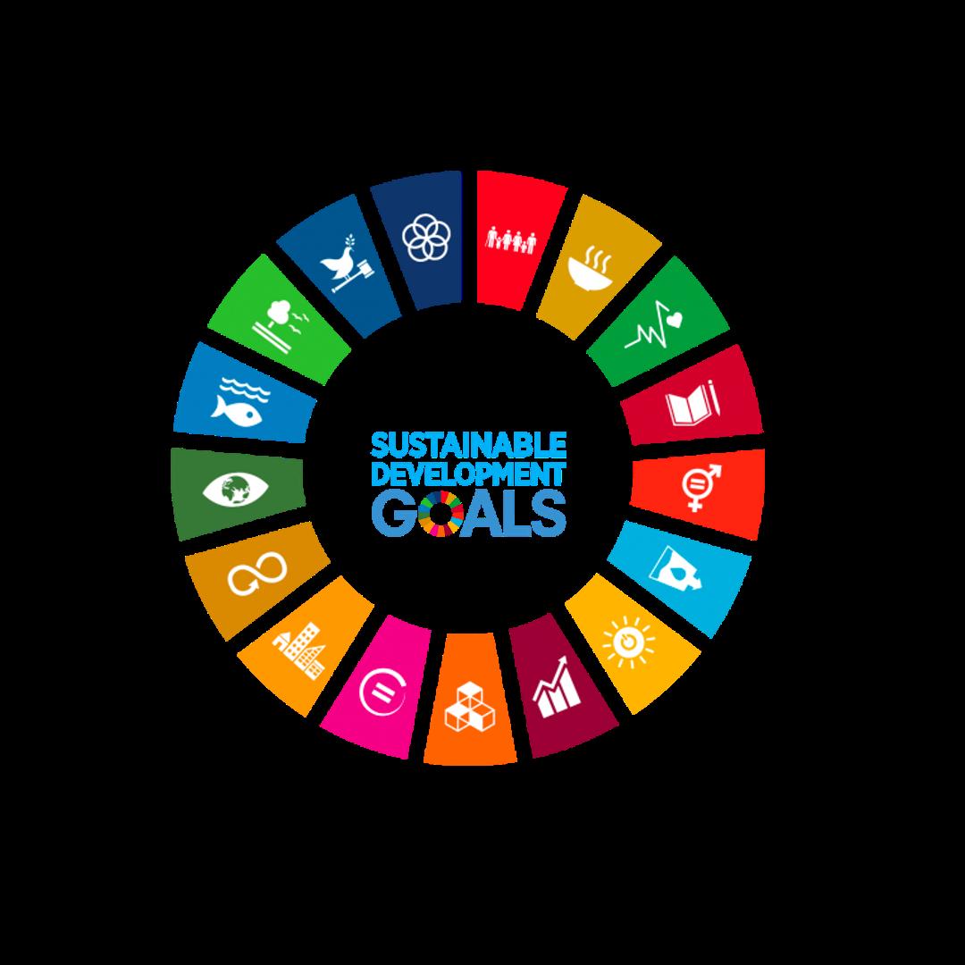 Strategie Nachhaltige Entwicklung 2030: Business as usual reicht nicht!